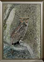 Great Horned Owl in the Rainforest